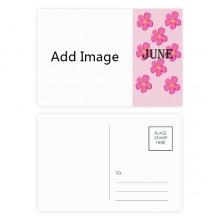 明信片卡片六月小花卡