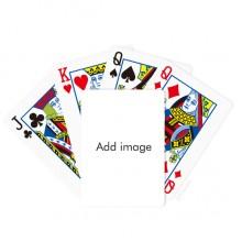 斗地主扑克牌纸牌桌游戏魔术礼物
