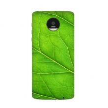 浅绿色横状叶脉植物自然清新纹理 Moto Z / Z Play / Z2 Play Mods Mods 背壳模块磁吸式手机壳