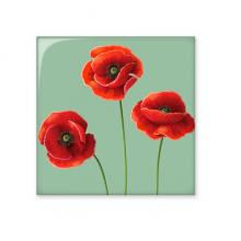 艺术画虞美人红花背景图 厨房浴室瓷砖墙面装饰创意瓷砖