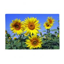 向日葵黄色蓝色天空 防滑地垫地毯卧室卫生间地板法兰绒垫礼物