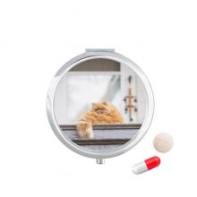 动物肥胖加菲猫摄影 圆形药盒便携镜子迷你药丸盒子礼物
