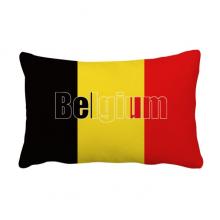 比利时国旗英文名 抱枕靠枕腰枕沙发靠垫双面含芯礼物