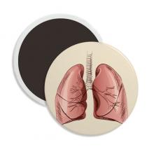 器官肺人类插画 圆形陶瓷冰箱磁铁贴2枚