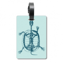 乌龟骨骼骨架素描 旅行箱包标签旅行者识别标牌
