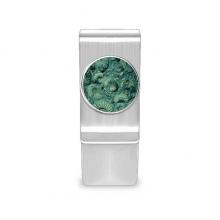 鹦鹉螺菊石化石照片标本 钱夹现金钱包卡夹
